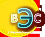 ООО «ВоронежЭнергоСтандарт»